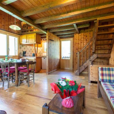 Les 2 Ormes - salon, salle à manger, cuisine